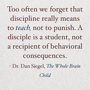 Discipline means to teach, not to punish.