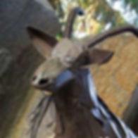 garbage goat.jpg