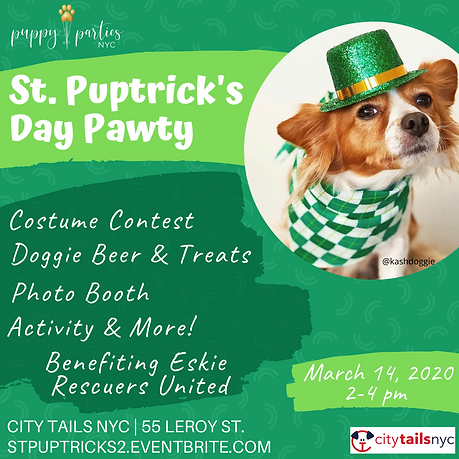 FINAL _ St Puptricks Flyer 2020.png