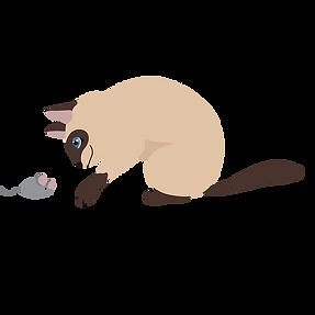 cat 14.png