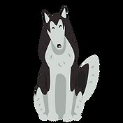 Husky 5.png