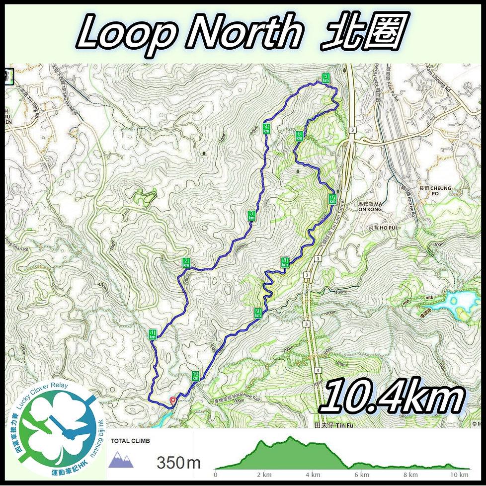 Loop N_2020_orginal_34_pen_finished_a.jp