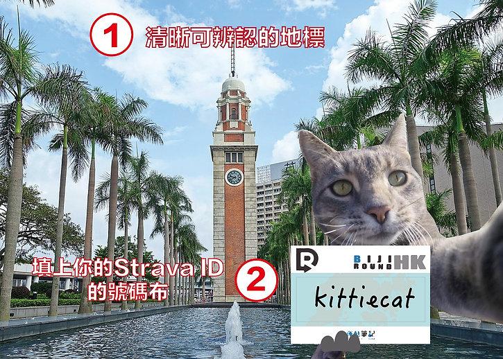 sample_KLN_1.jpg