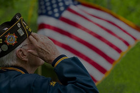 Veteran_Salute_edited.jpg