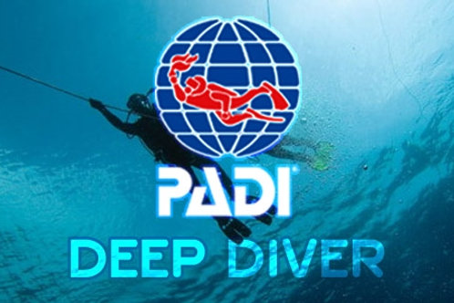 Deep Diver Specialty Course - 2020