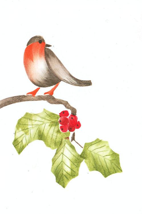 Roodborsje op een takje met bes