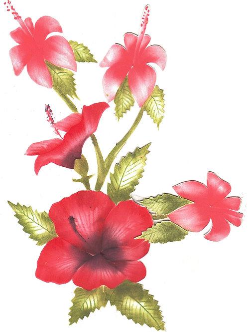 Combinatiepakket van de grote en kleine hibiscus