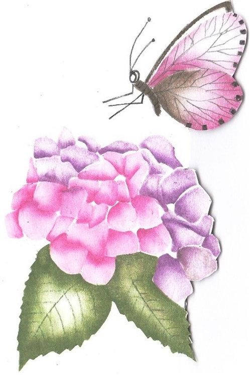 Combinatiepakket van de hortensia en roze vlinder