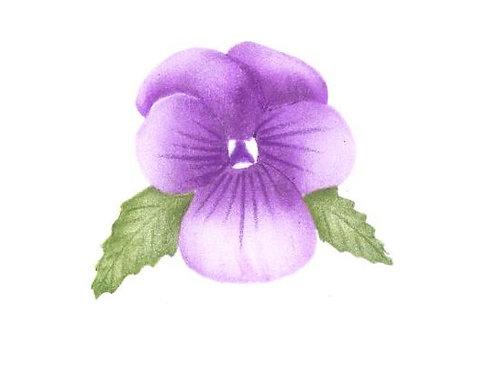 Kleine viooltje