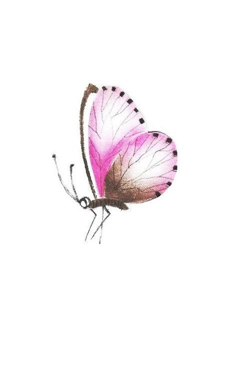 Roze vlinder klein