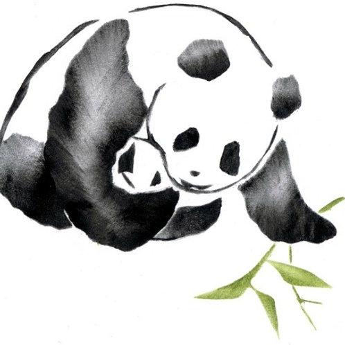 Panda met baby