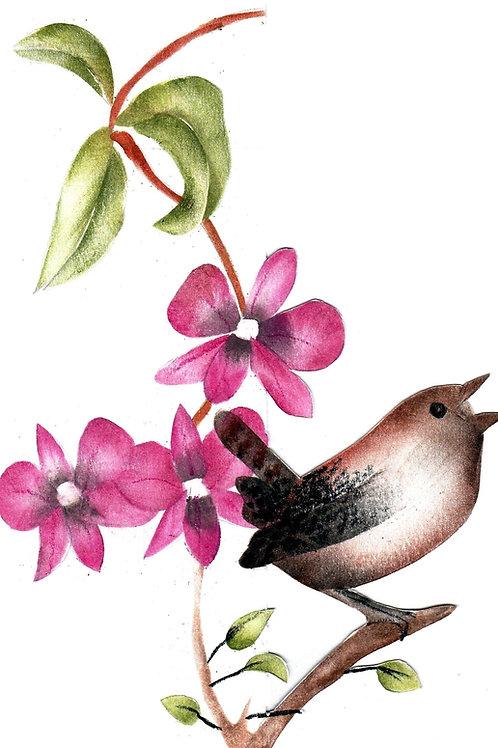 Combinatiepakket van de grote winterkoning en larat orchidee
