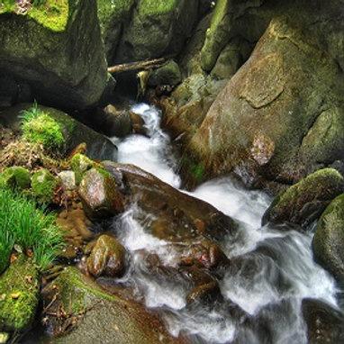 Mountain Stream Meditation