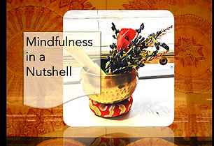 Mindfulness in a Nutshell Logo.png