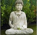 Meditation Training.jpg