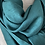 Thumbnail: Selena Vert