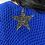 Thumbnail: Bruno Bleu Roi
