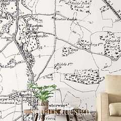 squark-design-luxury-vintage-map-feature-wall-bespoke-wallpaper-home-decor-business-wall-a