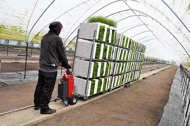 S12 Electric Tow Tug Greenhouse