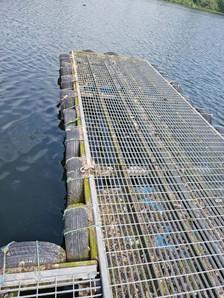 used pontoon.jpg