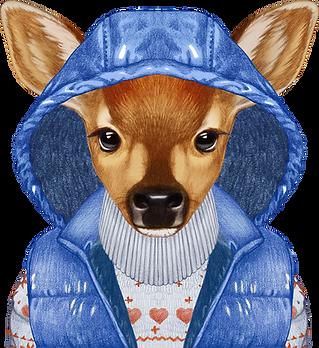 zima Deer