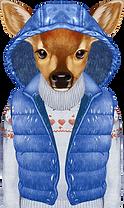 cerfs hiver