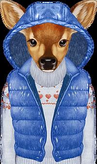Winter-Rotwild