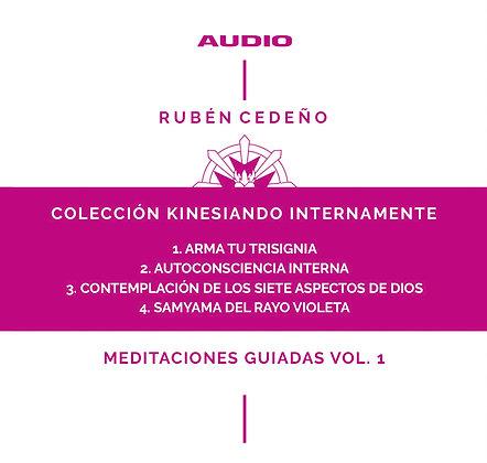 Colección Kinesiando Internamente Vol. 1 - Rubén Cedeño