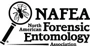 Official-NAFEA-2013-logo-300x153.jpg