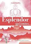 libro Metafísica Esplendor Sin Limites, Amida Buddha