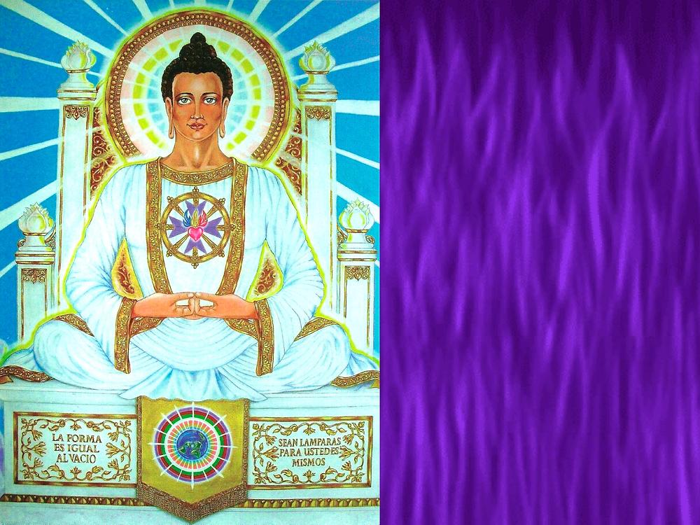 Gautama Llama Violeta