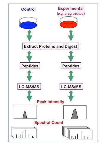 Label-free proteomics experimental design