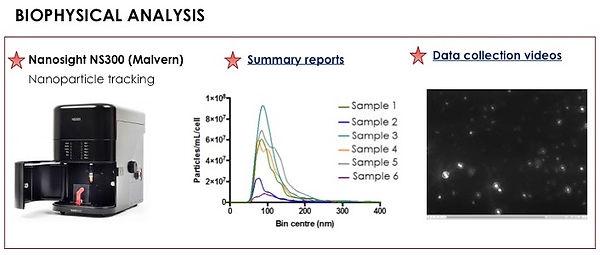 EVs Biophysical Analysis.jpg