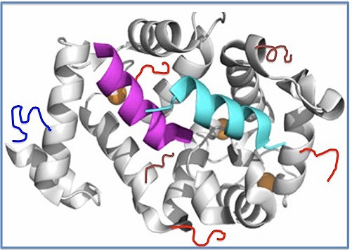 Gemini Biosciences launches new proteomics and antibody services
