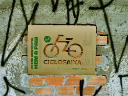 Crime ambiental nem a pau!
