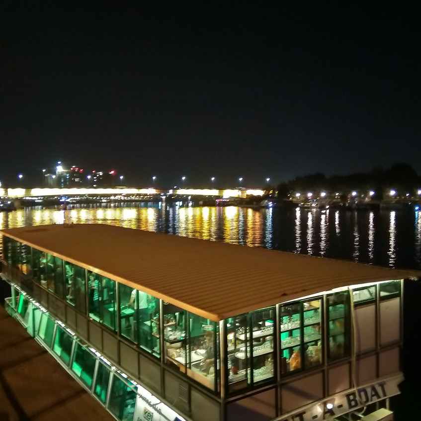 The river Sava by night