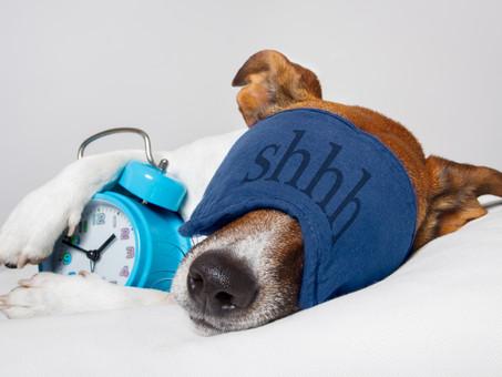 Está dormindo pouco e acha que está tudo bem? #sqn... É hora de rever sua rotina.