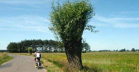Wycieczka rowerowa do Krainy Otwartych Okiennic