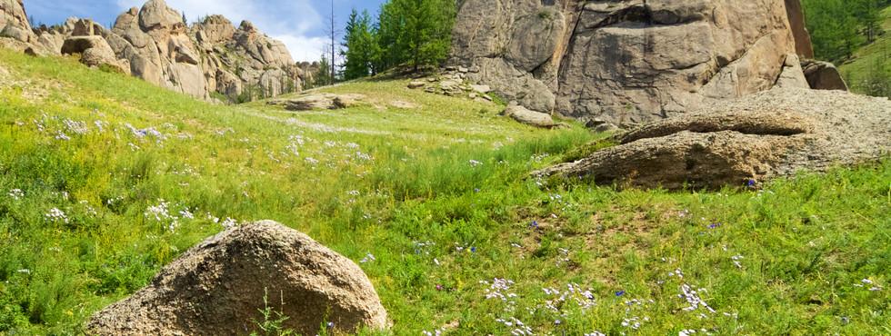 Landscape in Gorkhi Terelji National Par