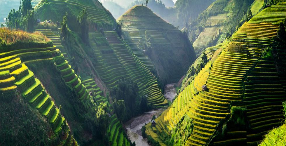 베트남 | 북부 | 계단식 논