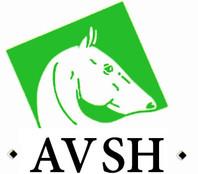 AVSH_Logo.jpg