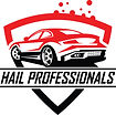Hail_Professionals_FINAL.jpg