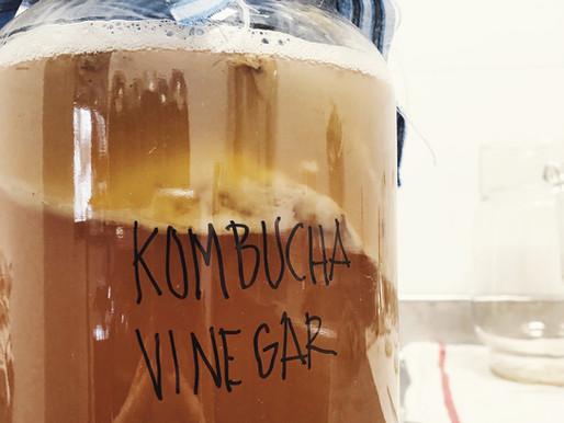 ¿Qué es el vinagre de Kombucha?