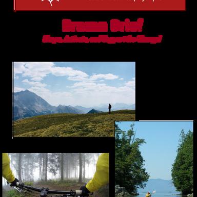 Brazen Brief - Page 1
