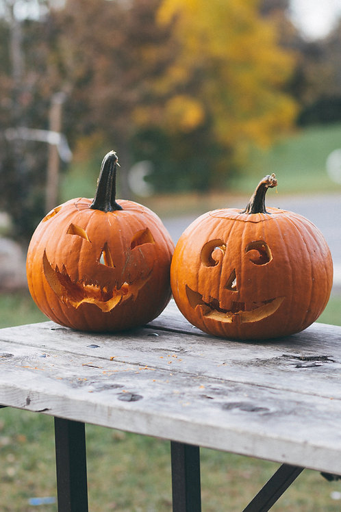 (6-8 Year Old) Cool Cat Pumpkin Decorative Live Class (Thurs. 10/8/2020 at 11am)