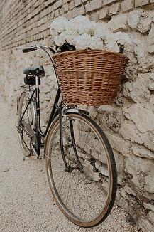 La Closeraie - Boulay-de-Canon photograp