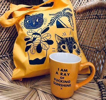 Ottawa Wellington Hintonburg funny mug gift sunshine