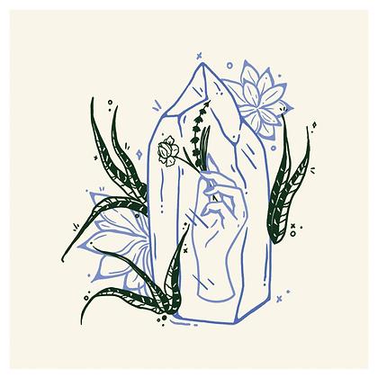 KINDRED & HELLBOUND 'Succulents' Print PG19