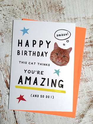 This Cat Thinks You're Amazing Birthday Card