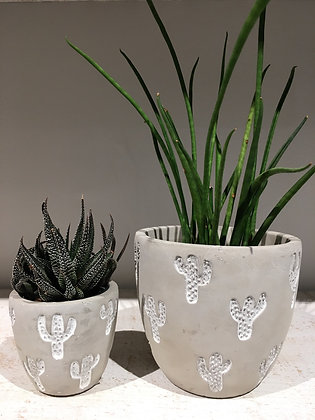 Set of 2 Cactus Pots (pickup/delivery only)
